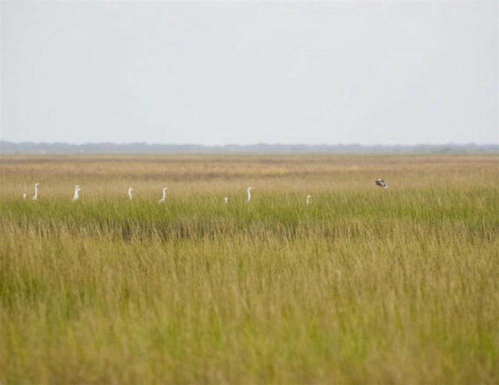 Land for Sale at L28 Bay Club Drive Seadrift, Texas 77983 United States