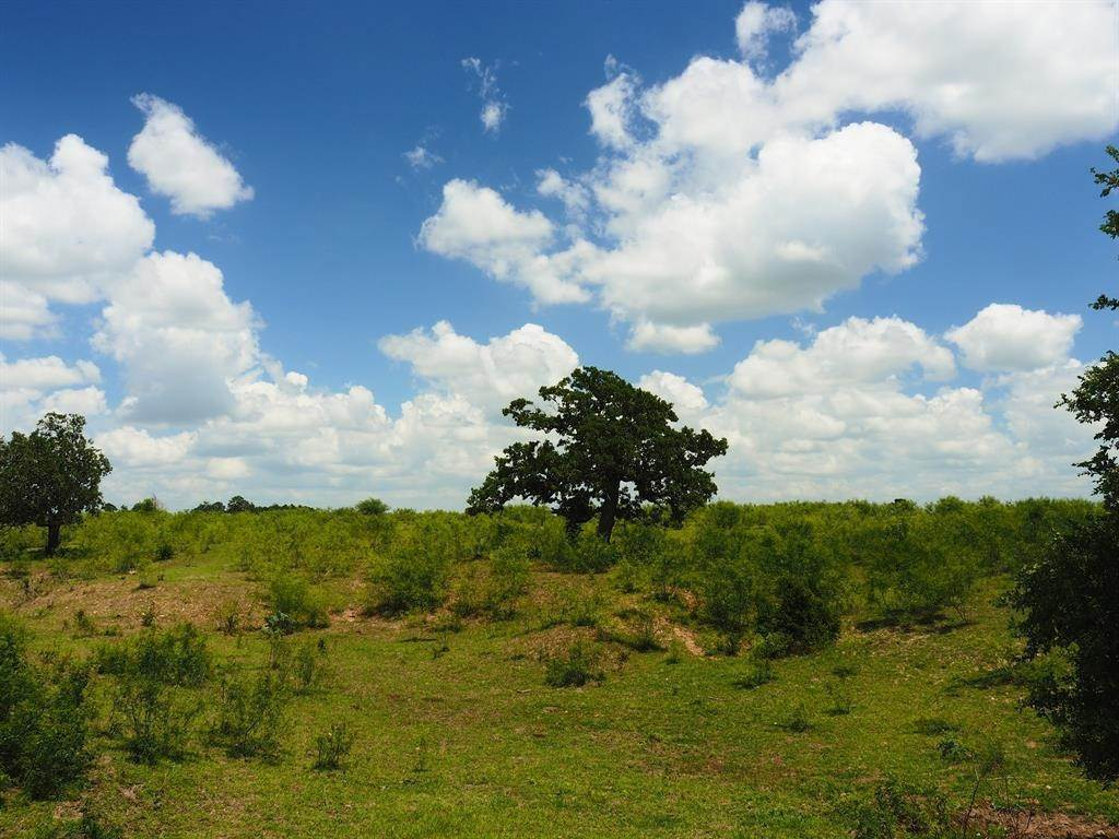Farm and Ranch Properties for Sale at Tbd Farm To Market 1482 Warda, Texas 78960 United States