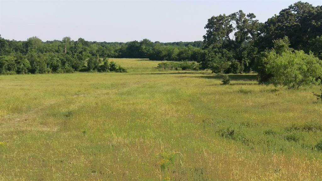 Farm and Ranch Properties for Sale at Tbd Leaning Oaks Lane Anderson, Texas 77830 United States