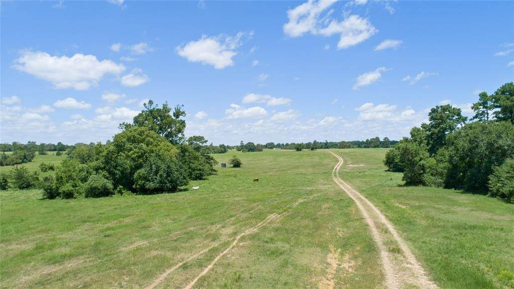 Farm and Ranch Properties for Sale at 0000 County Road 208 Navasota, Texas 77868 United States