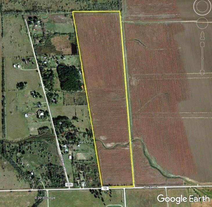Farm and Ranch Properties for Sale at 0000 County Road 15 Damon, Texas 77430 United States