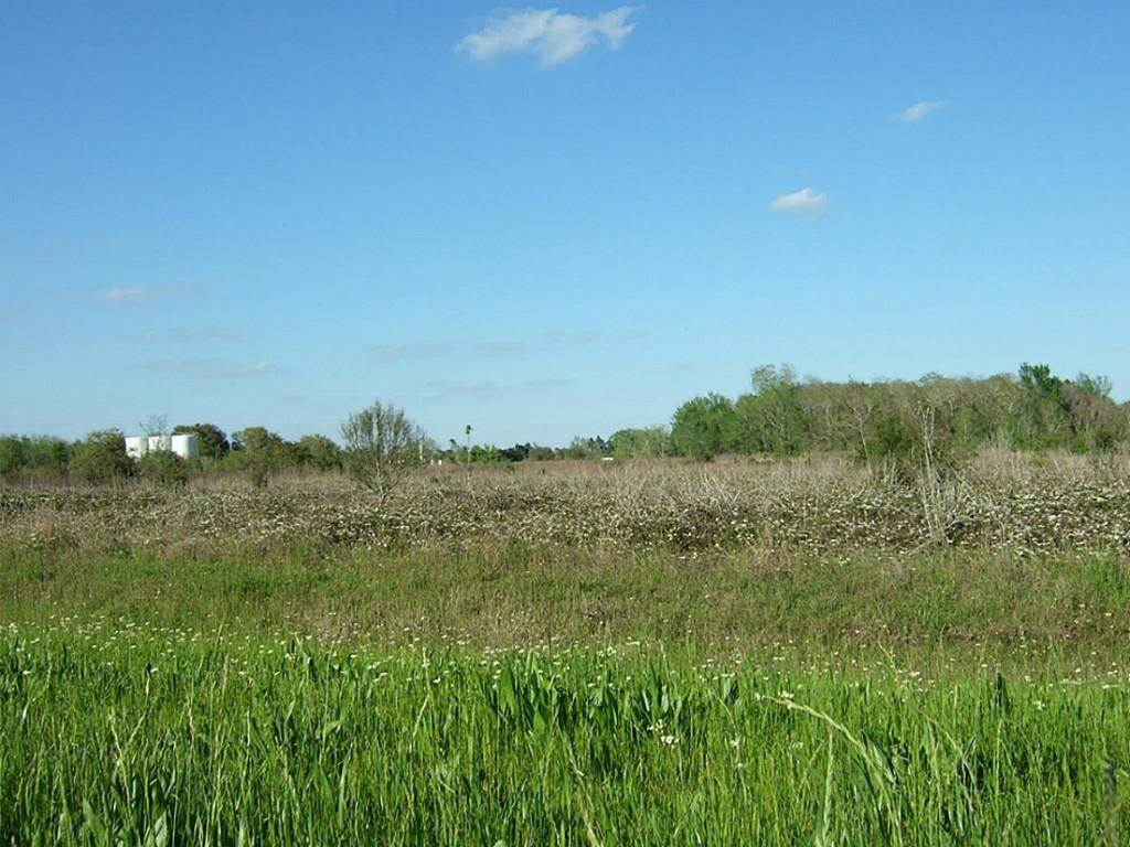 Land for Sale at 0 Fm 2919 Beasley, Texas 77417 United States