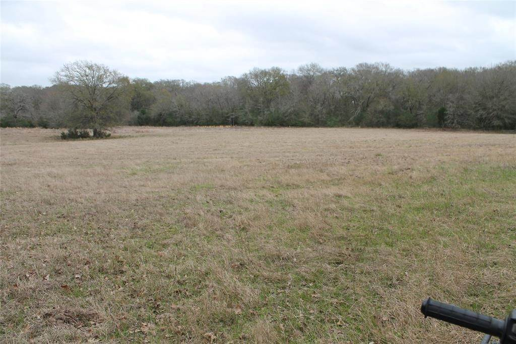 Farm and Ranch Properties for Sale at 0 Cr 186 Anderson, Texas 77830 United States