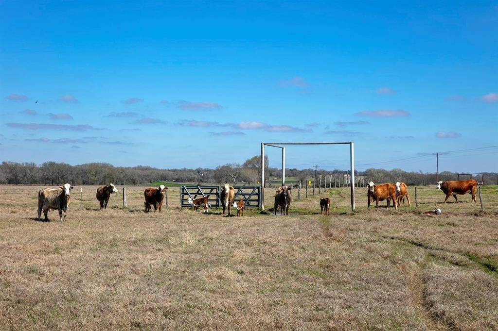 Farm and Ranch Properties for Sale at Tbd County Road 205 Caldwell, Texas 77836 United States