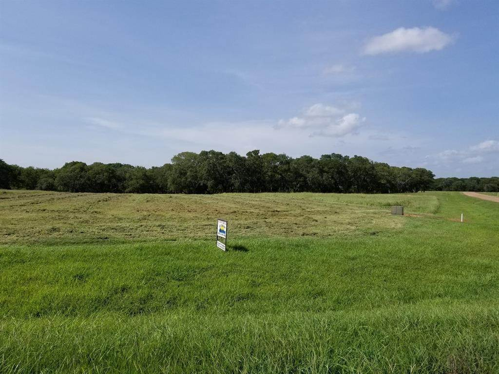 Land for Sale at 87 River Tree Drive Blessing, Texas 77419 United States