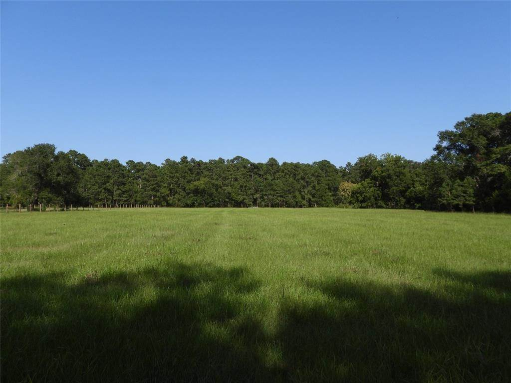 Land for Sale at 18855 Tbd 2 Bethel Road Richards, Texas 77873 United States