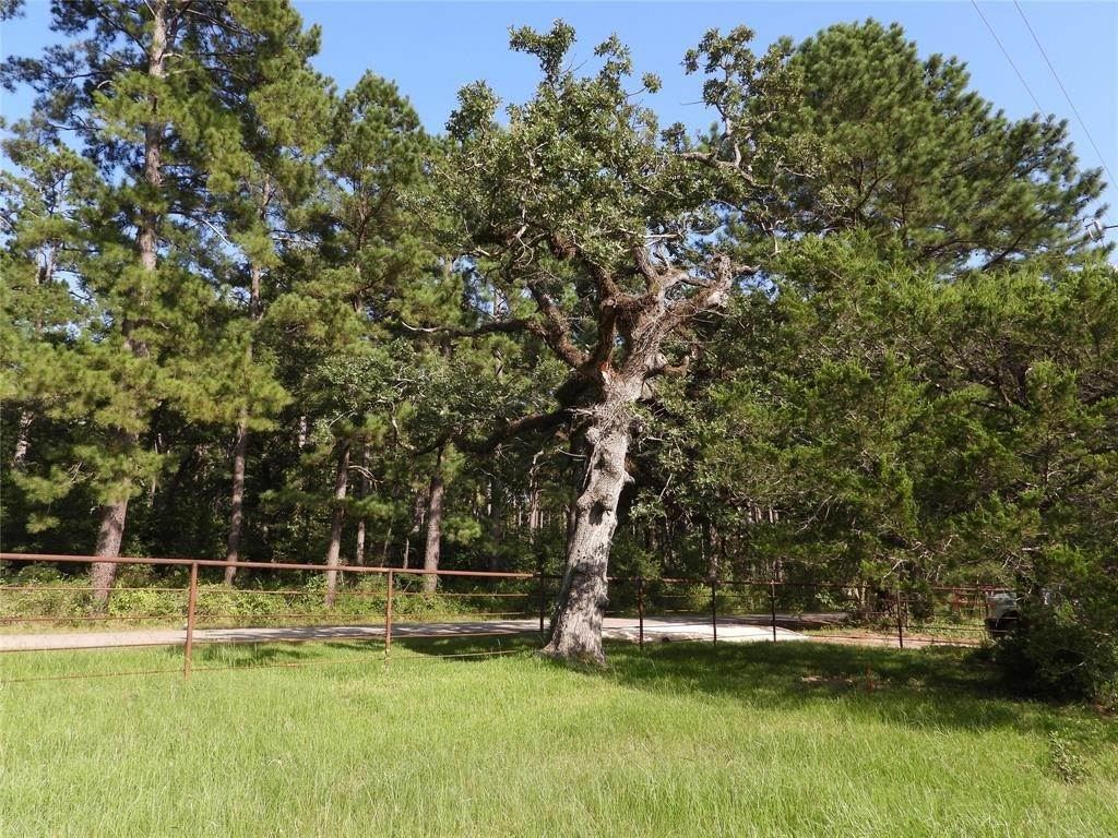 Land for Sale at 18855 Tbd 1 Bethel Road Richards, Texas 77873 United States
