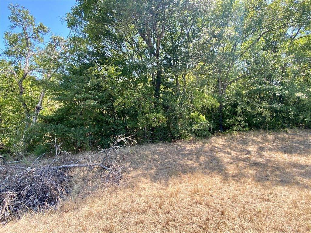 Land for Sale at Tbd Fm 2159 Calvert, Texas 77837 United States