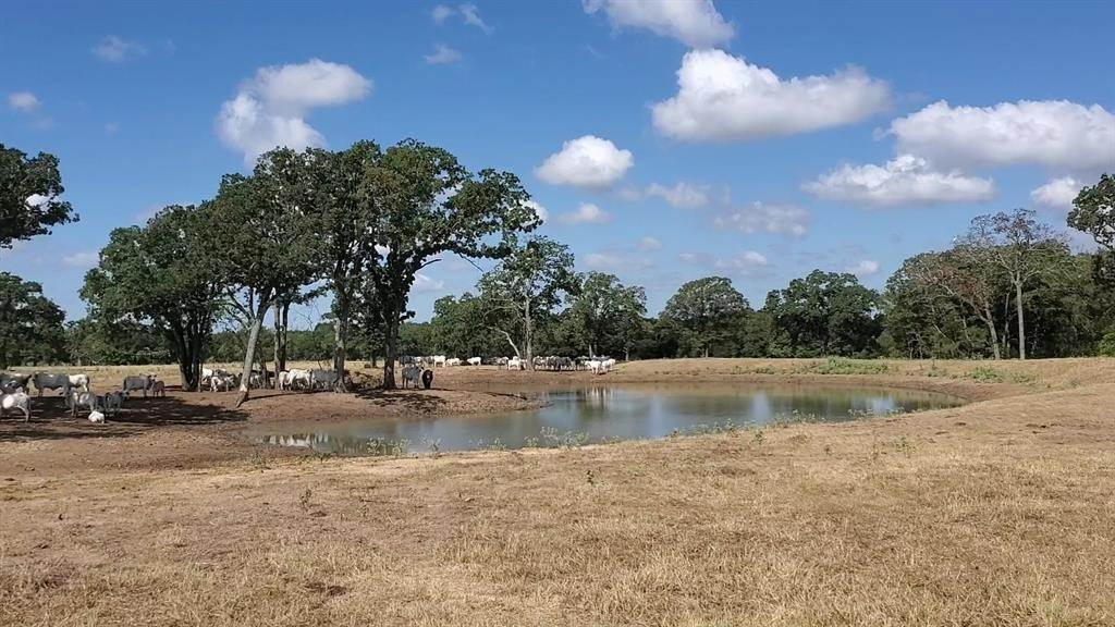 Farm and Ranch Properties for Sale at Tbd 2 Elmo Road Calvert, Texas 77837 United States