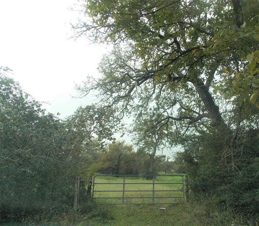 Farm and Ranch Properties for Sale at 000 Stalmach Road New Ulm, Texas 78950 United States