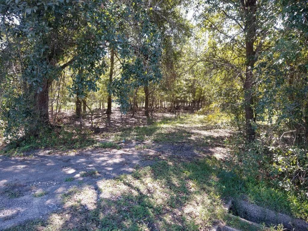 Land for Sale at 000 Fm 1875 Beasley, Texas 77417 United States