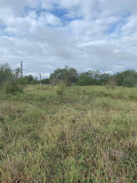 Land for Sale at 264 County Road 1331 Alice, Texas 78332 United States