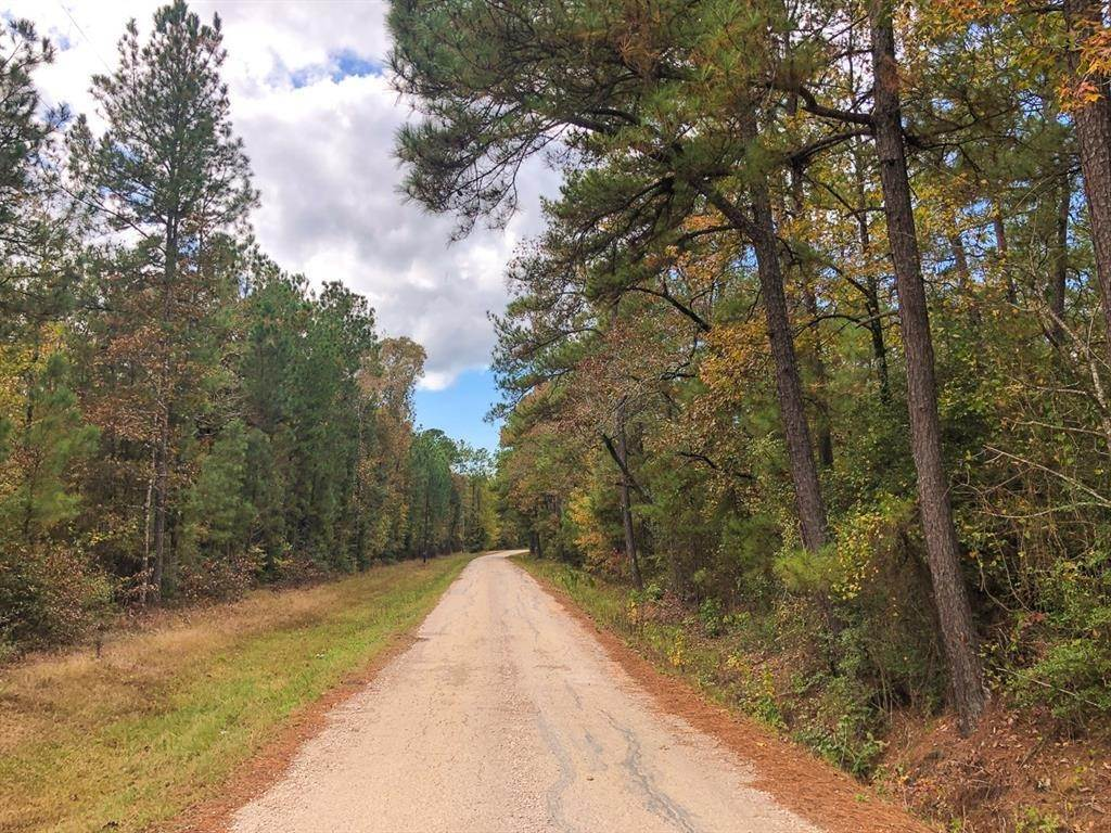 Farm and Ranch Properties for Sale at 0 Willow Springs Rd Oakhurst, Texas 77331 United States