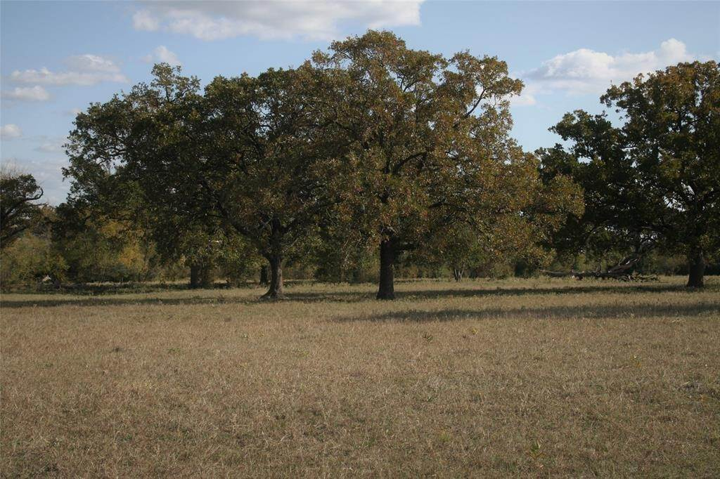 Farm and Ranch Properties for Sale at 4953 Highway 21 Madisonville, Texas 77864 United States