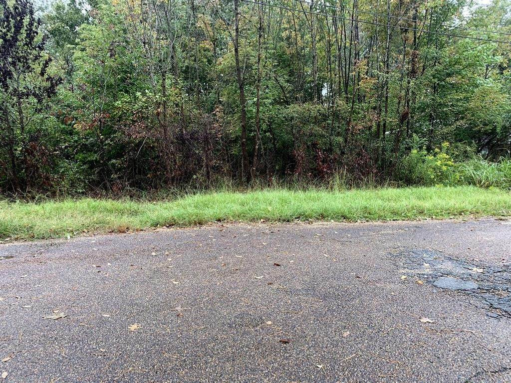 Land for Sale at 0 Martin Street Fordyce, Arkansas 71742 United States
