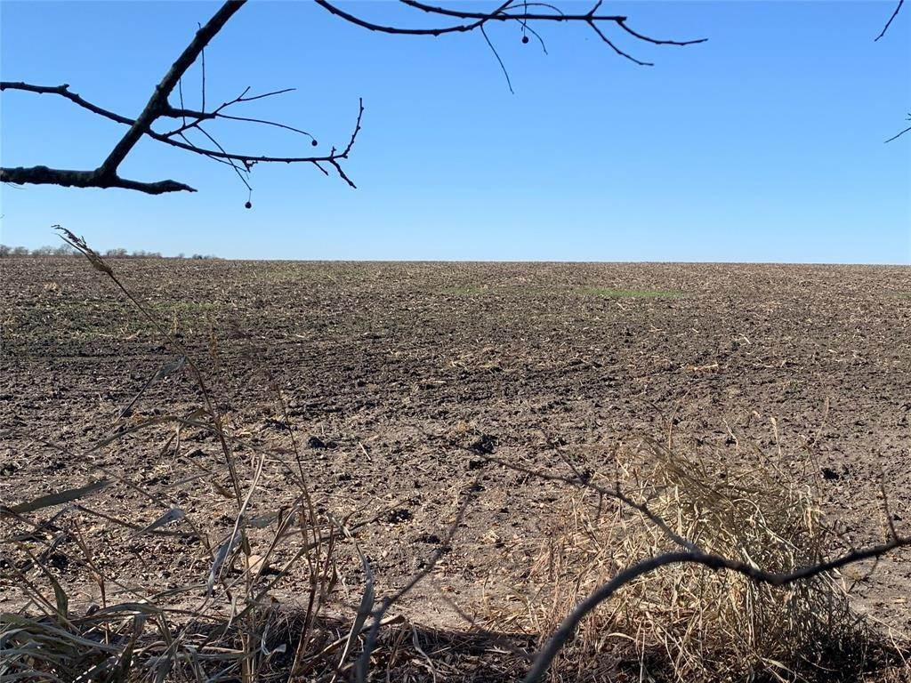 Land for Sale at Lot 1 Lcr 158 Coolidge, Texas 76635 United States