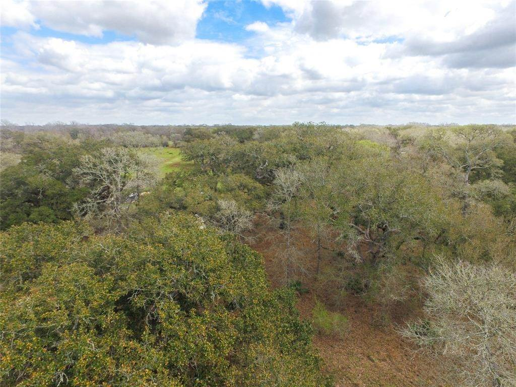 Farm and Ranch Properties for Sale at 0 Ashwood Road Road Van Vleck, Texas 77482 United States
