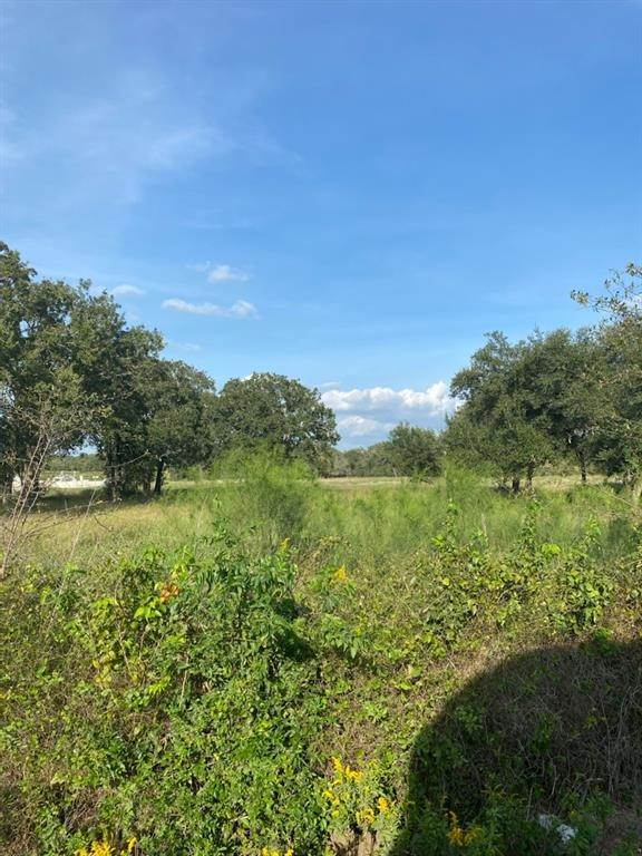 Land for Sale at 345 Meridian Lane Luling, Texas 78648 United States