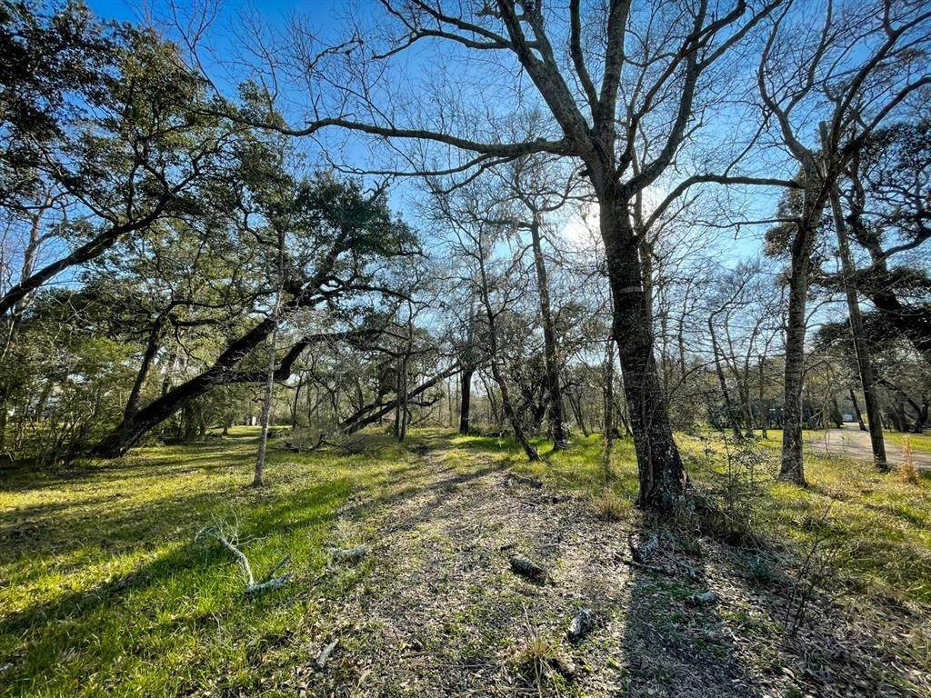 Land for Sale at 0 Deer Run Road Damon, Texas 77430 United States