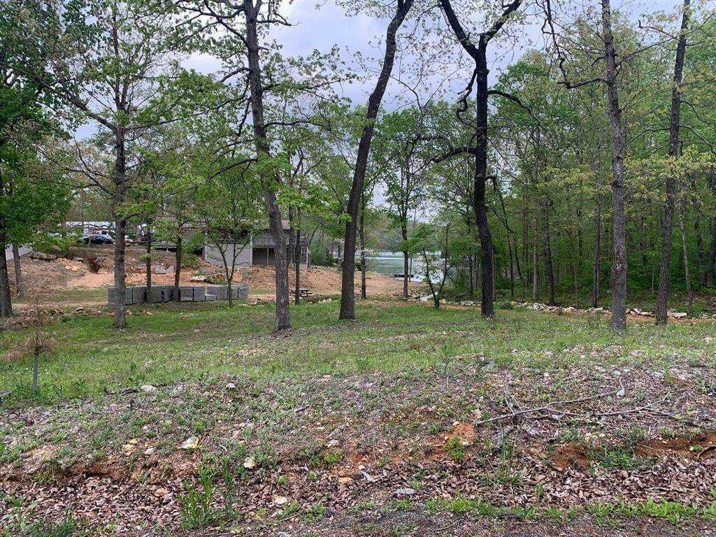 Land for Sale at 100 Summit Ridge Drive Williford, Arkansas 72482 United States