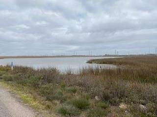 Land for Sale at 0 Interstate 45 La Marque, Texas 77568 United States