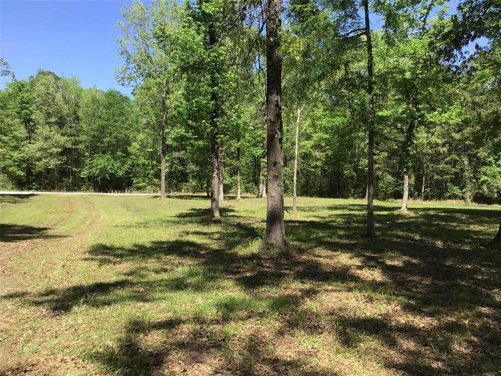 Land for Sale at Tbd Cr 490 Broaddus, Texas 75929 United States